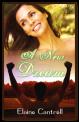 A New Dream book cover