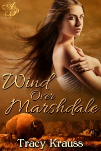 Wind over Marshdale book Cover