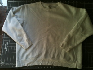 Sweatshirt before picture