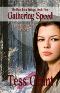 Gathering Speed book cover