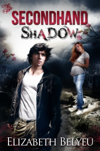 Secondhand Shadow book cover